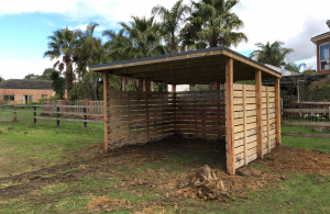 Horse Shelters2